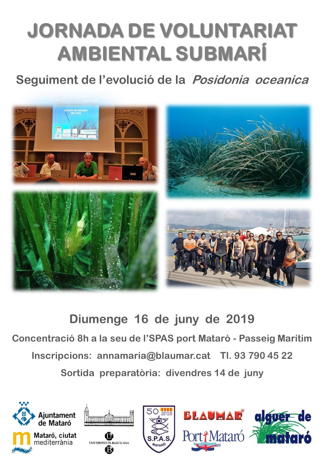 20190606 PosterSeguimentPosidoniaCamp2