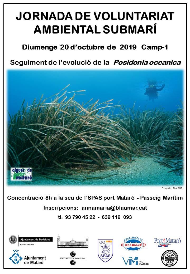 SPAS-Posidonia-20191008 Poster Seguiment Posidonia